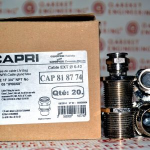Взрывозащищенные кабельные вводы CAPRI серии ADE 1F 3/4″ NPT No 5