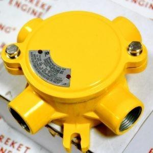 Взрывозащищенные соединительные коробки серии | Warom FHD51 3/4 Series Explosion-proof Junction Boxes